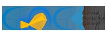cac_hd_logo (1)